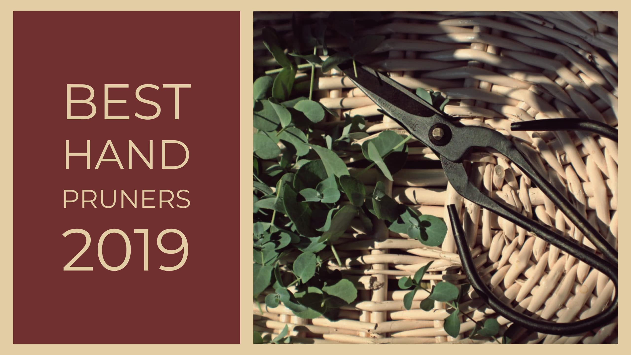 Best Hand Pruners 2020 Reviews, Ratings & Comparisons