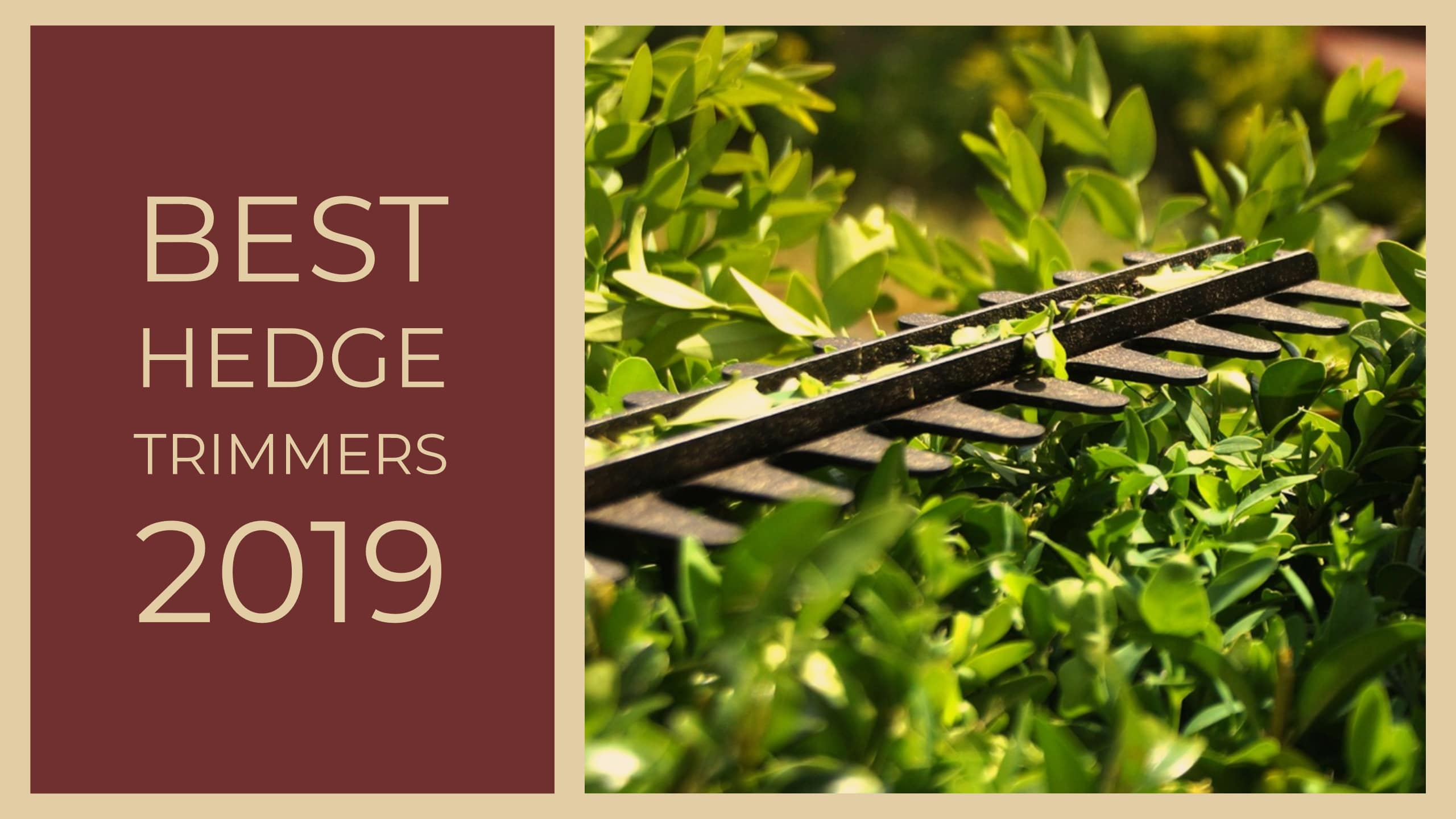 Best Hedge Trimmers 2020 Reviews, Ratings & Comparisons