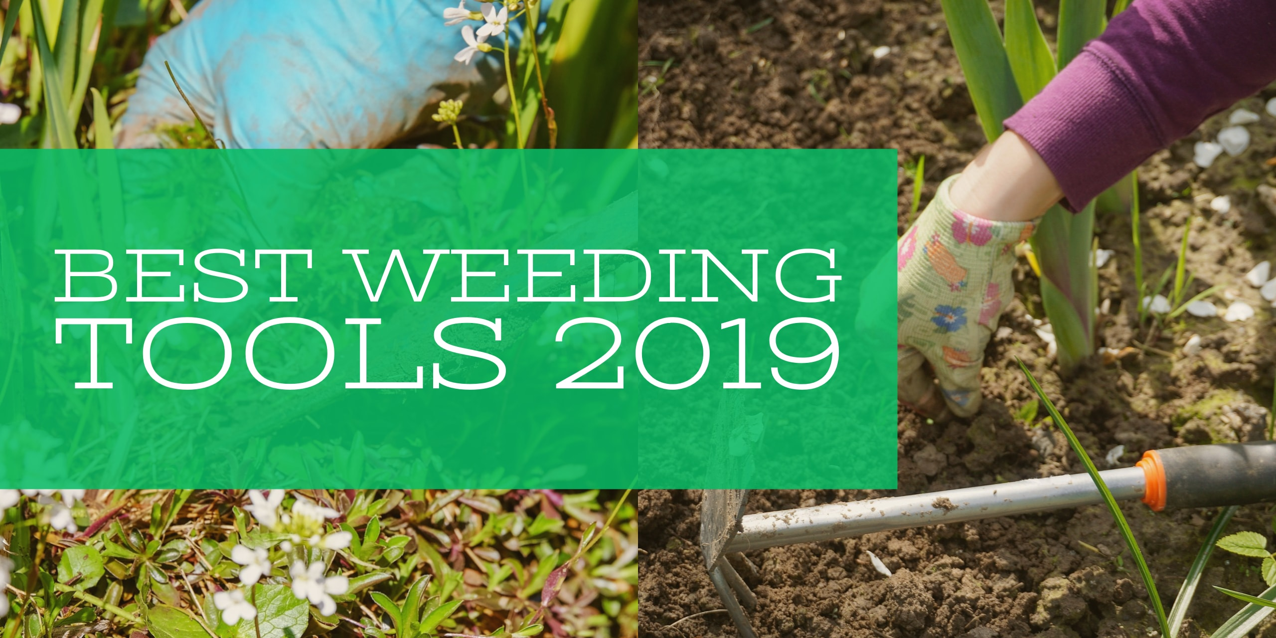 10 Best Weeding Tools 2020 Reviews, Ratings & Buying Guide