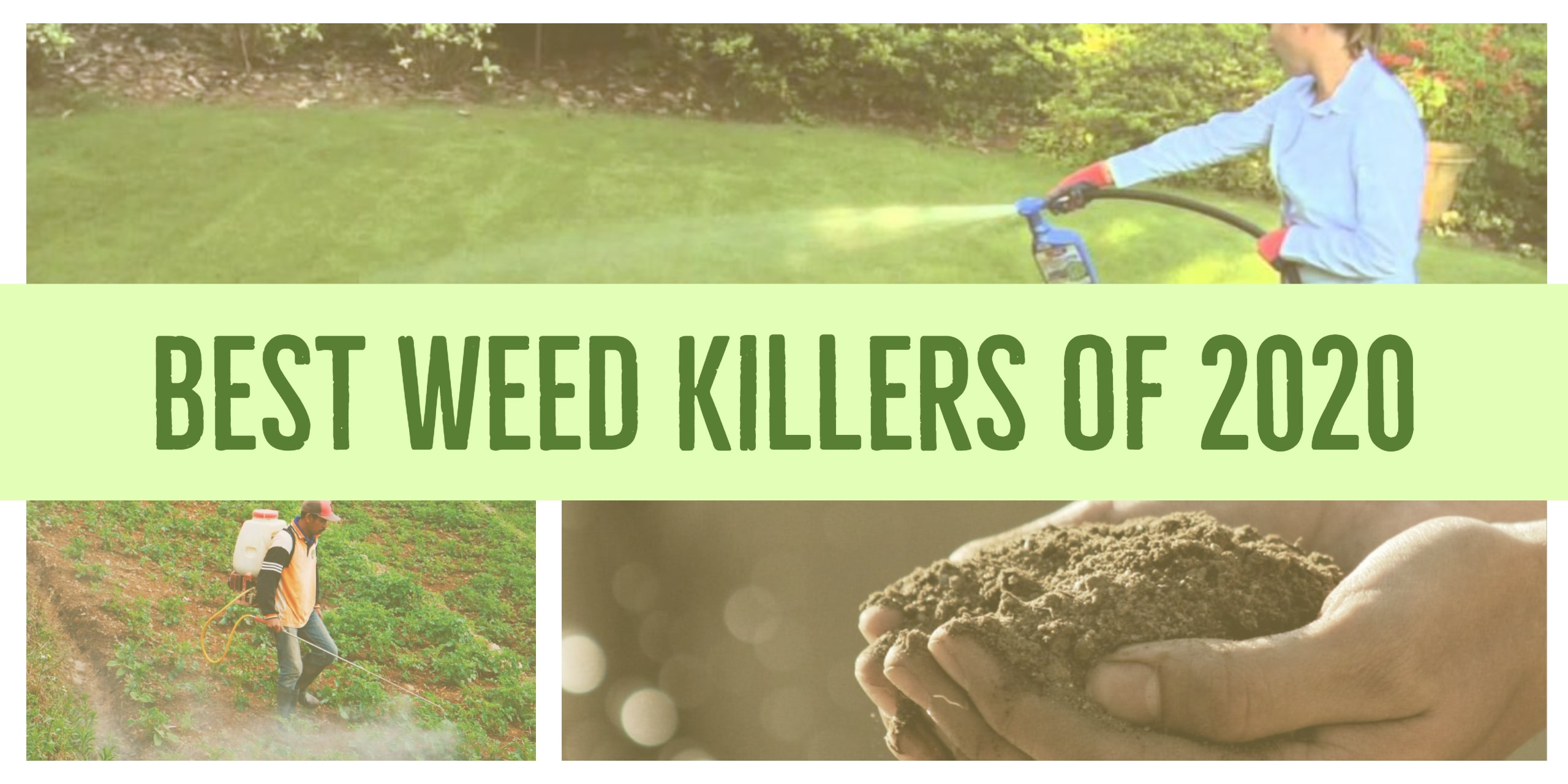 Best Weed Killers 2020 Reviews and Buying Guide