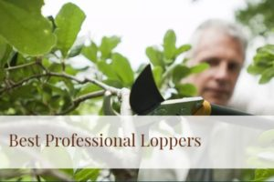 best professional loppers 2020