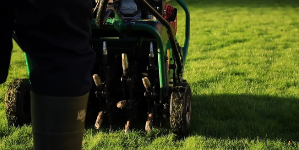how to use tines for grass