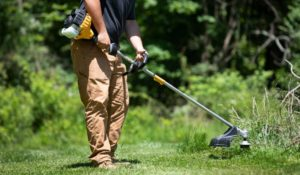 Types of string trimmer