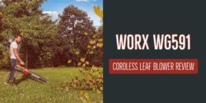 worx wg591
