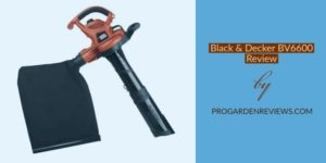 Black and Decker BV6600