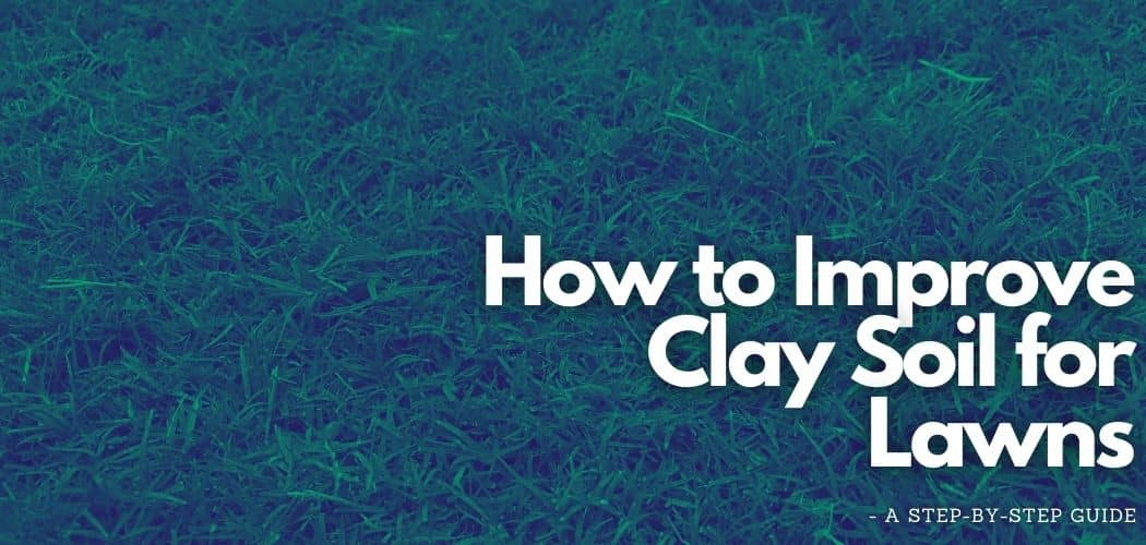 improve clay soil for lawns